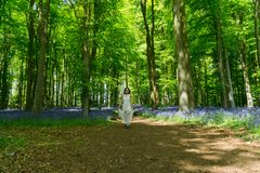 Filipino model running through a blue bell wood Royalty Free Stock Image