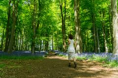 Filipino model running through a blue bell wood Stock Images
