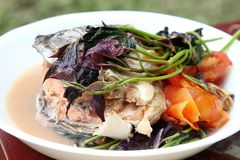 Filipino snapper fish head sinigang soup. With tomato and tamarind for sour taste Stock Photography