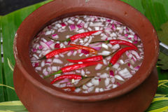 Filipino spicy vinegar source Royalty Free Stock Photos