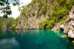 filippine Isola di Coron Lago barracuda Fotografie Stock Libere da Diritti
