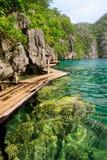 filippine Isola di Coron Lago Kayangan Fotografie Stock Libere da Diritti