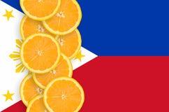 Filippinerna sjunker och den vertikala raden för citrusfruktskivor royaltyfri foto