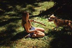 Fille à genoux tenant un bâton pour son chien images libres de droits