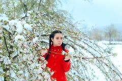 Fille étonnée par des fleurs de ressort de bâche de neige dans l'arbre de floraison photo libre de droits