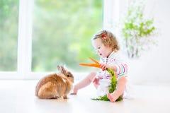 Fille adorable d'enfant en bas âge avec les cheveux bouclés avec le vrai lapin Images libres de droits
