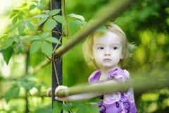 Fille adorable d'enfant en bas âge sur un fond vert photos libres de droits
