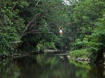 Fille asiatique de botaniste apprenant l'activit? en plein air d'aventure avec le mode de vie dans la for?t tropicale image stock