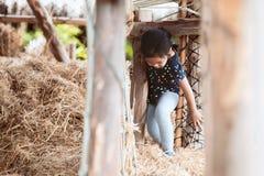 Fille asiatique mignonne d'enfant ayant l'amusement à jouer avec la pile de foin Photographie stock libre de droits
