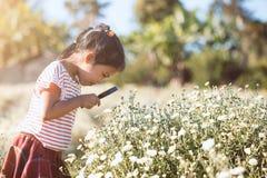 Fille asiatique mignonne d'enfant semblant la belle fleur par pour magnifier photo stock