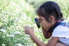 Fille asiatique mignonne d'enfant semblant la belle fleur par pour magnifier photos libres de droits