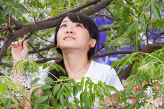 Fille asiatique se tenant parmi des feuilles Image stock