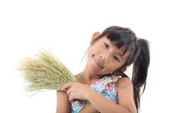Fille asiatique tenant l'usine de riz avec amour sur le blanc Image stock