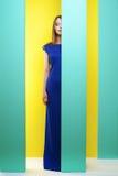 Fille attirante dans une longue robe Photographie stock