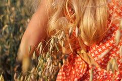 Fille avec de longs cheveux bouclés marchant sur le champ avec l'avoine au coucher du soleil Été cru photographie stock