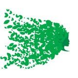 Fille avec des cheveux des feuilles Photographie stock libre de droits