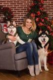 Fille avec deux chiens d'arbre de Noël proche enroué Photos stock