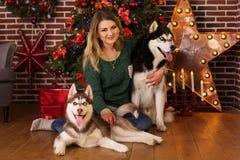 Fille avec deux chiens d'arbre de Noël proche enroué Photo stock