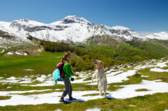 Fille avec le chien au printemps Pyrénées Images libres de droits