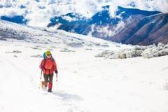 Fille avec le chien en montagnes d'hiver Photos stock