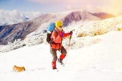 Fille avec le chien en montagnes d'hiver Photos libres de droits