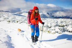 Fille avec le chien en montagnes d'hiver Image stock
