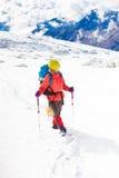 Fille avec le chien en montagnes d'hiver Image libre de droits