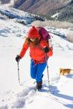 Fille avec le chien en montagnes d'hiver Photo stock