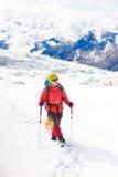 Fille avec le chien en montagnes d'hiver Images stock