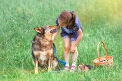 Fille avec le chien et le chat sur le pique-nique Photo stock
