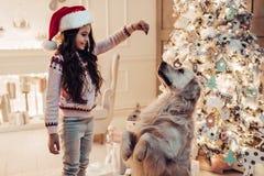 Fille avec le chien sur le ` s Ève de nouvelle année Photographie stock libre de droits