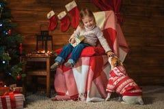 Fille avec le cric Russel de chien terier à la maison avec un arbre de Noël, photo stock