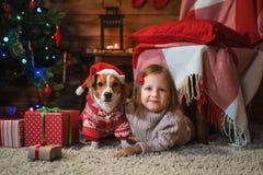 Fille avec le cric Russel de chien terier à la maison avec un arbre de Noël, photos stock