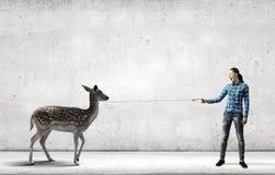 Fille avec le kangourou Photo libre de droits