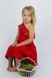 Fille avec le panier des raisins Photo stock