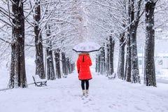 Fille avec le parapluie marchant sur le chemin et l'arbre de rangée L'hiver Photo stock