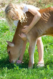 Fille avec le veau. Photo libre de droits