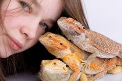 Fille avec les dragons barbus Photo stock