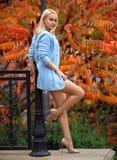 Fille avec les jambes parfaites posant en parc d'automne images libres de droits