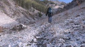 Fille avec un chien dans les montagnes banque de vidéos
