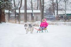 Fille avec un chien pour la promenade pendant l'hiver Image stock