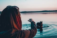 Fille avec un chien sur le lac images stock
