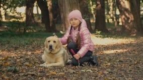Fille avec un Labrador clips vidéos