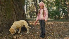 Fille avec un Labrador banque de vidéos