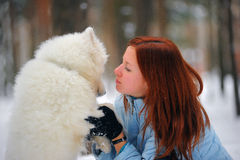 Fille avec un Samoyed de chiot Photo stock