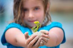 Fille blonde d'enfant montrant une usine de plage avec le sable dans des mains Images libres de droits