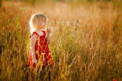 Fille blonde dans le domaine Photos libres de droits