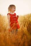 Fille blonde dans le domaine Image stock