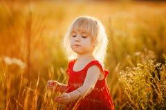 Fille blonde dans le domaine avec des fleurs Images stock