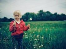 Fille caucasienne marchant parmi les pissenlits et l'herbe sur le pré à la soirée photographie stock